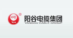 山東陽谷電纜集團有限公司
